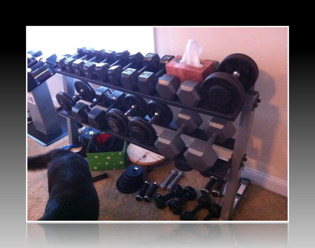 Shannon's at home dumbbell rack