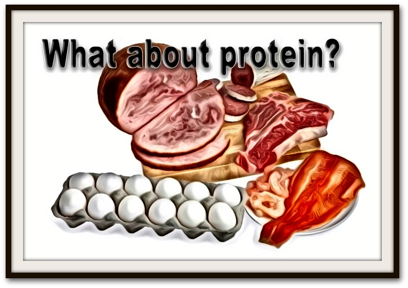 What do John and Brad say about protein dosing?